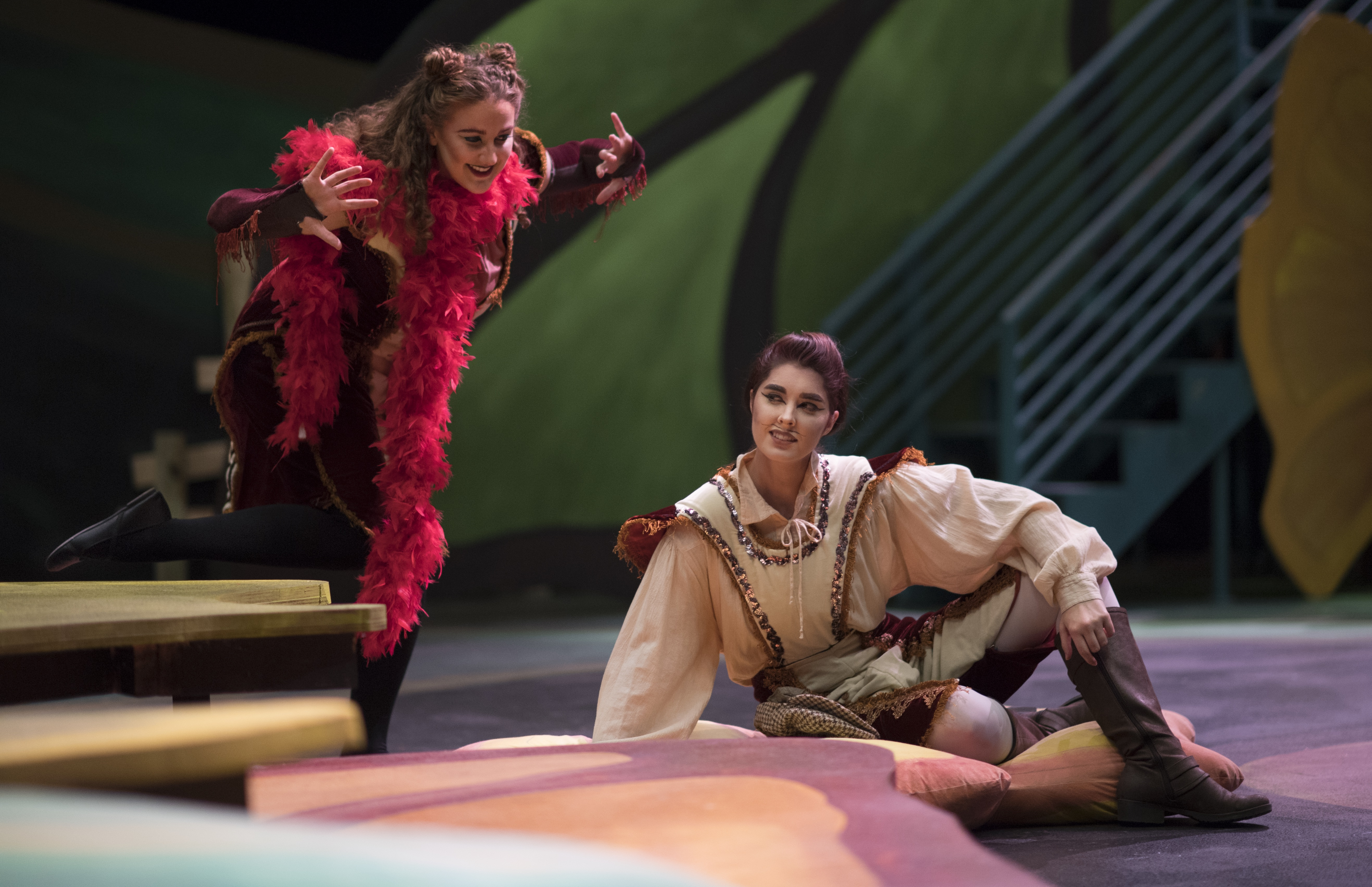 """UNT College of Music's """"The Cunning Little Vixen"""" shares tale of discovery through the eyes of woodland creatures"""