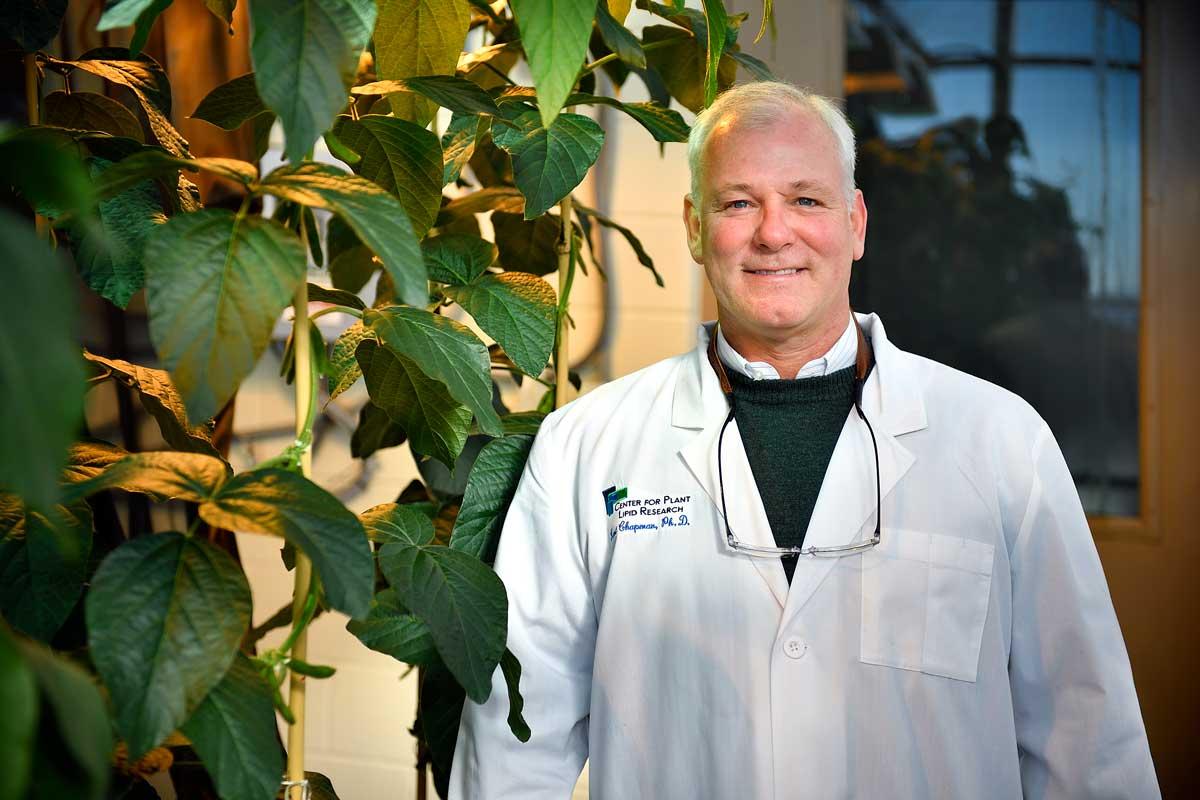 Kent Chapman, Regents Professor in the University of North Texas' Department of Biological Sciences