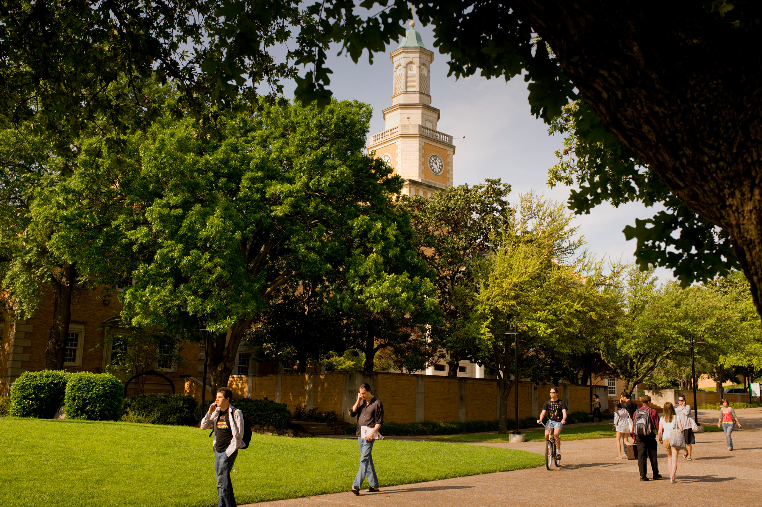 More than 2,000 trees – ranging from oak, mulberry, pine, and mesquite trees – decorate the University of North Texas main campus.