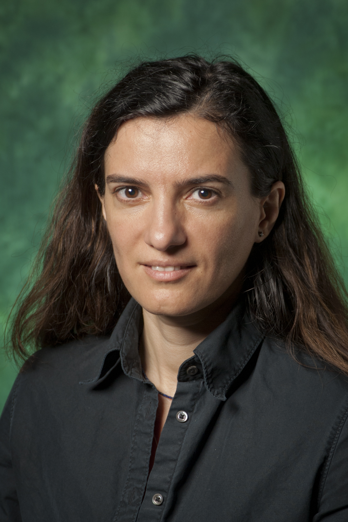 Computer science and engineering assistant professor Cornelia Caragea is now a NSF CAREER award winner.
