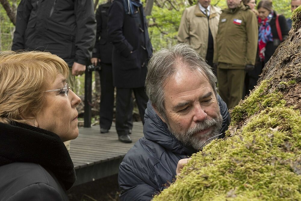 "UNT Professor Ricardo Rozzi leads Chilean President Michelle Bachelet on an ""ecotourism with a hand lens"" tour of the Miniature Forests of Cape Horn. Photo Courtesy: Universidad de Magallanes"