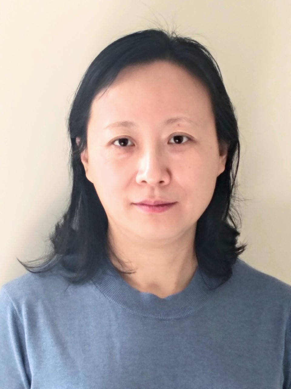 Hui Zhao, assistant professor in the UNT Department of Computer Science and Engineering