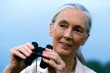 The University of North Texas Distinguished Lecture Series welcomes Jane Goodall